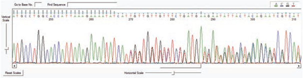 wykres_diagnostyka medgen